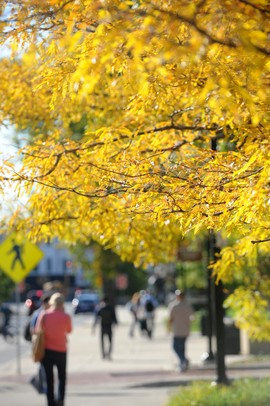 100711-AJC-fall-colors-01_display.JPG