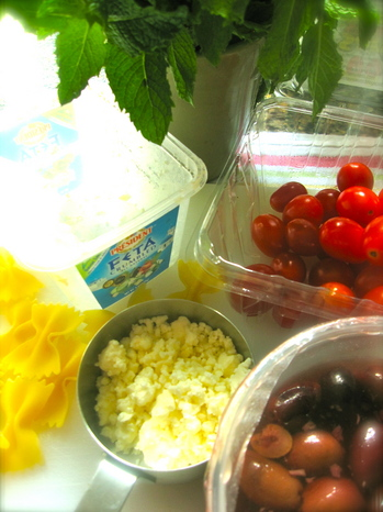 lampman, ingredients greek pasta salad feta and mint