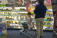 Annie Zirkel Shopping cart.jpg