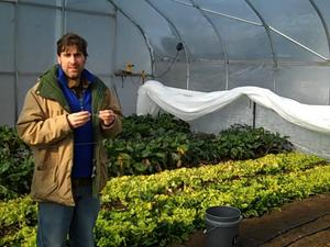 Borden - Shannon Brines in his greenhouse