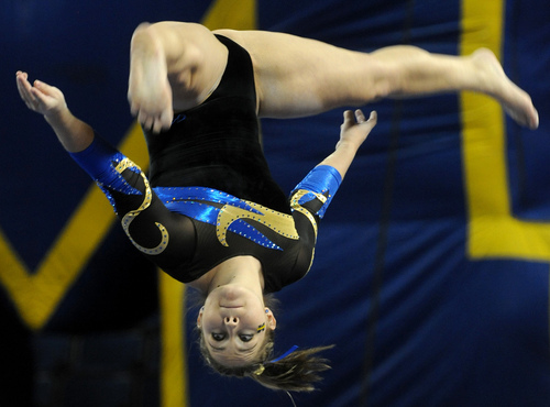 1st class gymnastics state meet michigan
