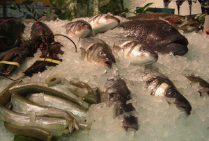 Borden - Monahan fish display