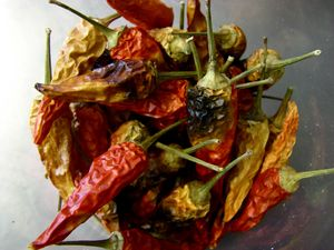 Harvest Kitchen_hot peppers.jpg