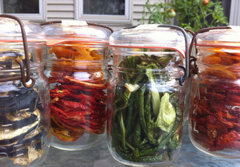 Borden - jars of dried veggies