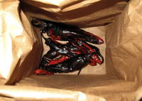 Peppers in bag.jpg