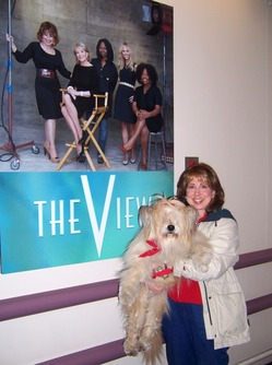 Local dog wins 'Best Mutt in Show' contest on ABC's 'The View'