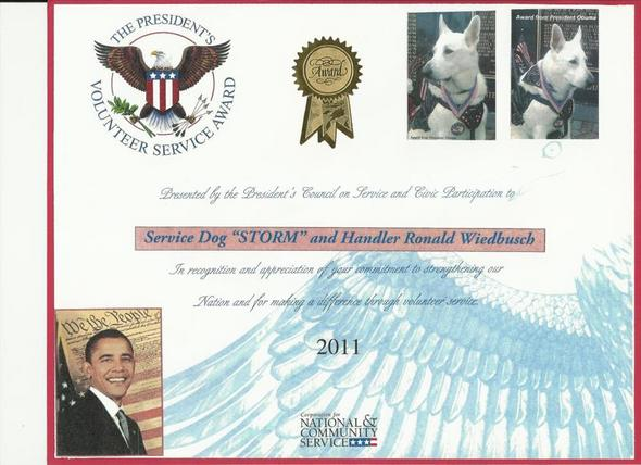 The presidents volunteer service award party invitations for Service animal certificate template