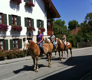 Lundberg-Haflinger-Bernried-August-2011
