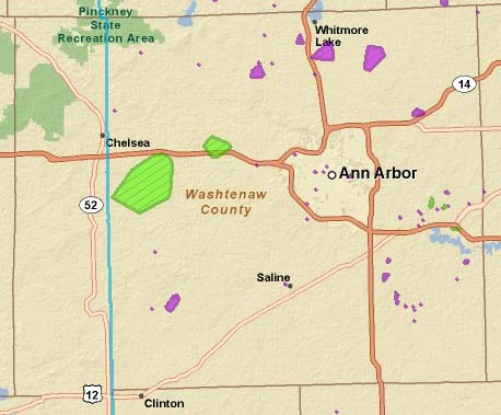 1,300 DTE customers remain without power in Washtenaw County