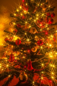 1327969_sparkly_christmas_tree.jpg