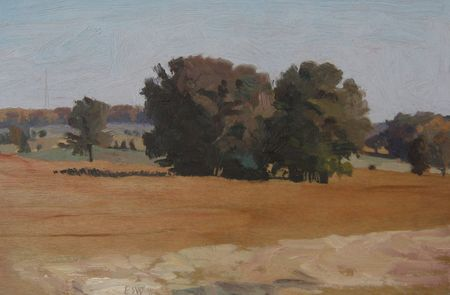 Elaine Wilson, Soybeans Looking East from Ludwig Farm, oil on board.jpg
