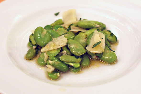 fava_beans_salad_webster.jpg