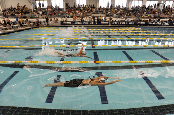 UM_Swimming_Canham_Natatorium.jpg