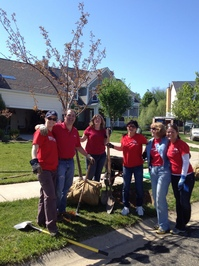 volunteers-trees-0274-v2.jpg