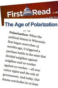 0606 ourvalues polarization.jpg