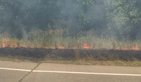 Grass_fire_M-14.jpg
