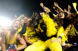 denard-lights-celebration.jpg