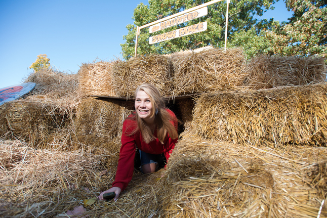 101112_NEWS_Jennys_Market_straw_maze_CS (4 of 5).jpg