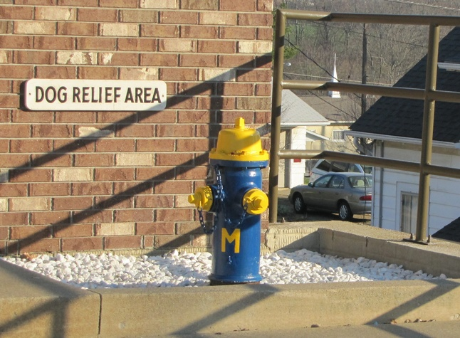 UM-firehydrant.jpg