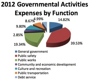 Ann_Arbor_expenses2011-12.jpg