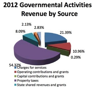 Ann_Arbor_revenue2011-12.jpg