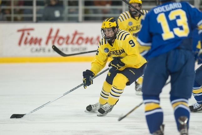 luke-moffatt-michigan-hockey-2013.JPG