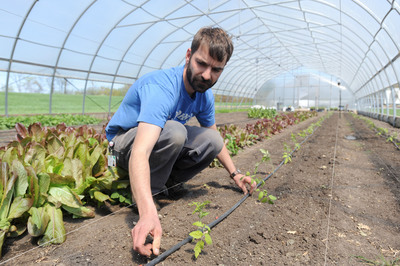Ypsilanti legalizes gardening on vacant lots and delays decision on hoop houses again