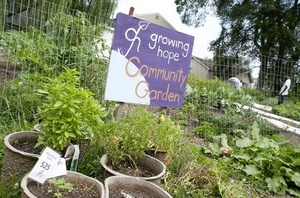 Thumbnail image for growing hope garden.jpg
