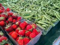 Thumbnail image for rtfarms-kapnick-strawberries-peas.jpeg