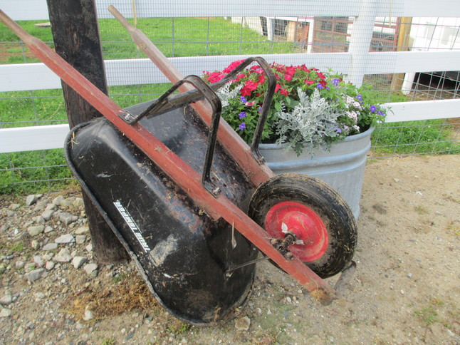 wheelbarrow 002.jpg