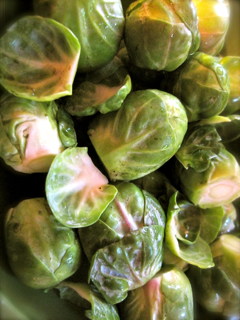 lampman; brussel sprouts