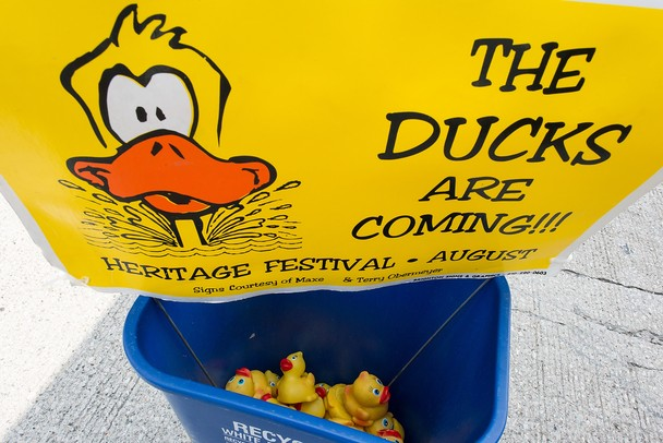 Rubber duckies sit in a bucket as they wait to be placed in with others in the launch above the Huron river, Sunday, August, 18. 