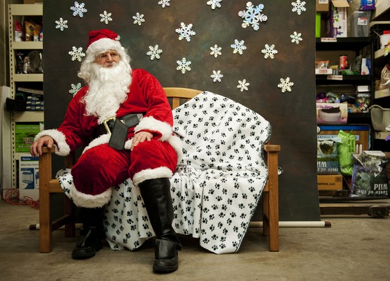 Santa sits in a chair waiting for the next dog to be photographed at Pet Supplies Plus on Saturday. All proceeds are donated to the Humane Society. Daniel Brenner I AnnArbor.com