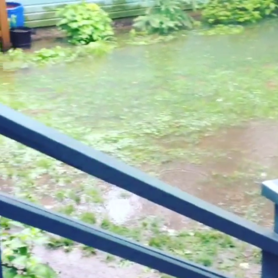 floodvid5.png