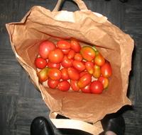 Paper Bag Magic To Ripen Green Tomatoes